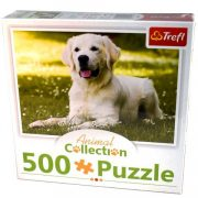 Animal Collection: Fehérszõrû Golden Retriever 500db-os puzzle